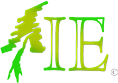 Insignia Enterprises Logo